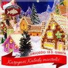 Kalėdinių meduolių miestelio atidarymas